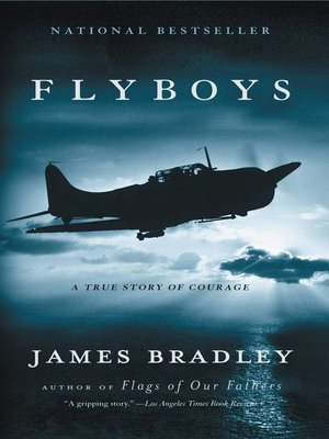 Cover image for Flyboys.