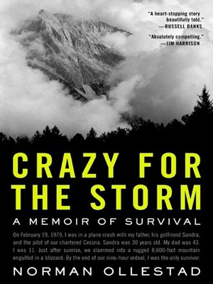 Cover image for Crazy for the Storm.